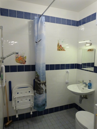 Disabled Access Wet Room