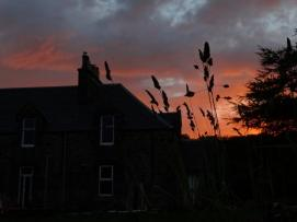 A Rare Sunset